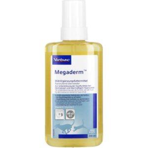 Megaderm