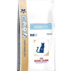 mobility gatto